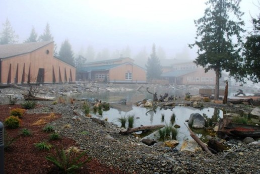 Squaxin Island Tribe campus